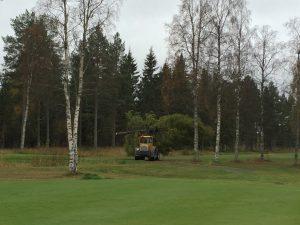 traktor_skog